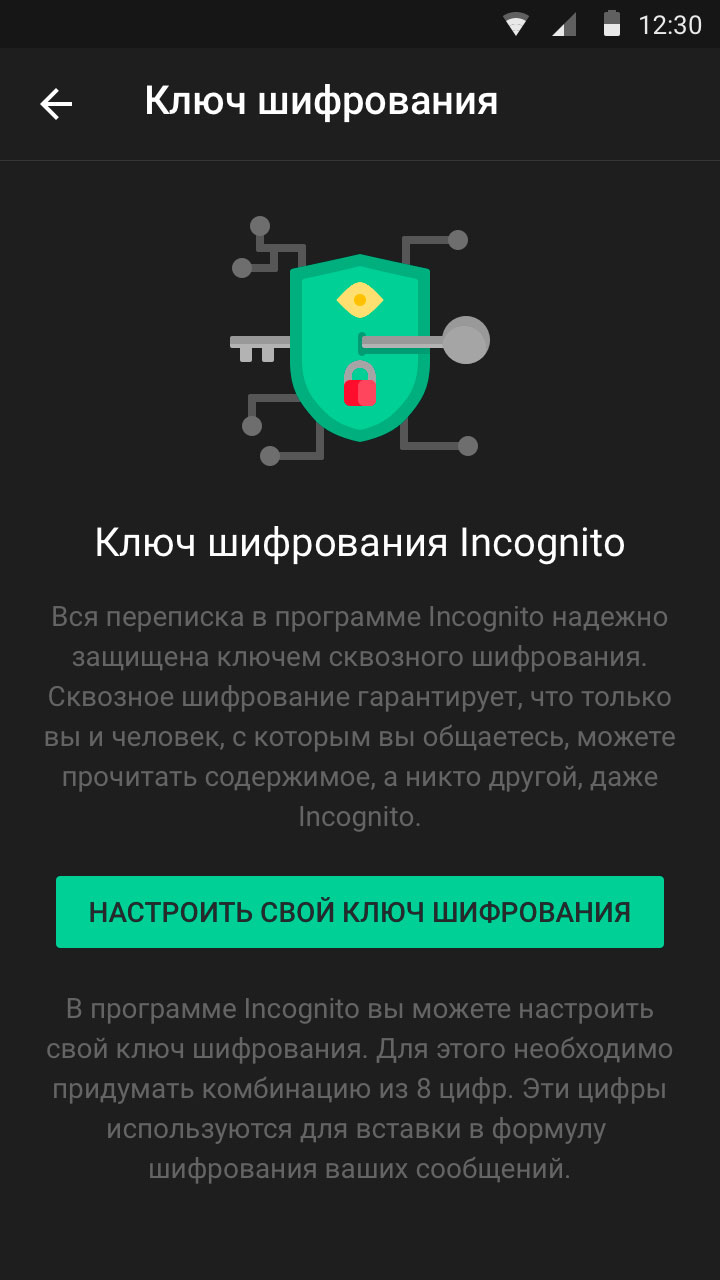 Incognito App Screen 10